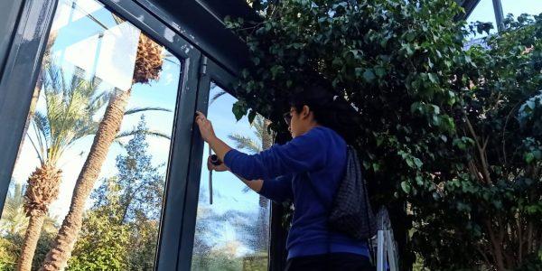 nettoyage des vitres en faible et grande hauteur